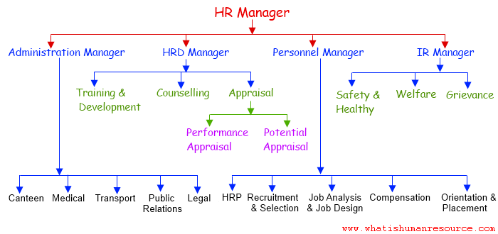 human resource planning at macro level in it industry Human resource planning : objectives, need, importance and  at the national level: human resource planning by government at the national  at the industry level.